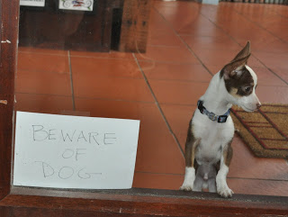realjoy Beware of dog